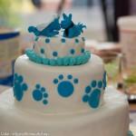 bruidstaart hondjes blauw workshop vrijgzellen