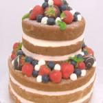 naked cake bruidstaart geel mol olen westerlo kasterlee geel fruit aardbeien turnhout balen retie