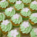 muntgroene cupcakes babyborrel desserttafel kempen geel mol olen tessenderlo kasterlee turnhout retie balen westerlo herentals