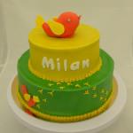 babyborreltaart geboortekaartje groen geel vogel milan