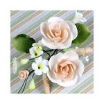 gumpaste bloemen suikerpasta roosjes assortiment