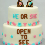 Gendertaart - he or she open to see